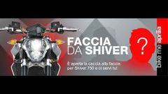APRILIA: Faccia da Shiver cercasi - Immagine: 7