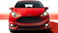 Immagine 2: Ford Fiesta ST 2013