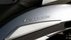 Immagine 9: Peugeot Geopolis 250ie