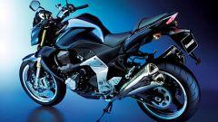 Kawasaki Z1000 2007 - Immagine: 4