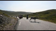 Raid Norge 2006 / Settima tappa - Honningsvag / Alta (280 km) - Immagine: 4