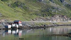 Raid Norge 2006 / Settima tappa - Honningsvag / Alta (280 km) - Immagine: 6