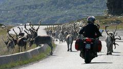 Raid Norge 2006 / Settima tappa - Honningsvag / Alta (280 km) - Immagine: 10