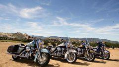 Harley Davidson gamma 2007 - Immagine: 15