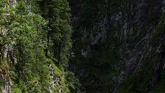 Al Dolomiti Ride con la Yamaha FJR 1300 AS - Immagine: 9