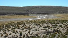 QUINTO GIORNO: DESERTO E VALLI IMMERSE NELLA NATURA - Immagine: 12