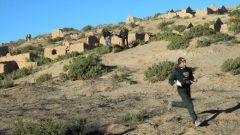 QUINTO GIORNO: DESERTO E VALLI IMMERSE NELLA NATURA - Immagine: 13