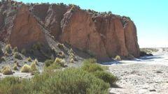 QUINTO GIORNO: DESERTO E VALLI IMMERSE NELLA NATURA - Immagine: 24