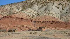 QUINTO GIORNO: DESERTO E VALLI IMMERSE NELLA NATURA - Immagine: 32