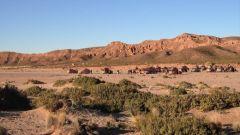 SECONDO GIORNO: IL DESERTO SALAR DE UYUNI - Immagine: 19