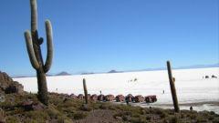 SECONDO GIORNO: IL DESERTO SALAR DE UYUNI - Immagine: 56