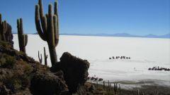 SECONDO GIORNO: IL DESERTO SALAR DE UYUNI - Immagine: 58