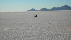 SECONDO GIORNO: IL DESERTO SALAR DE UYUNI - Immagine: 66