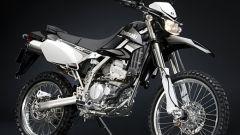 Kawasaki Special Edition - Immagine: 3