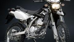 Kawasaki Special Edition - Immagine: 4