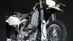 Kawasaki Special Edition - Immagine: 6