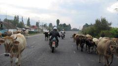 La vita in Cina - Immagine: 4
