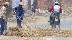 La vita in Cina - Immagine: 9