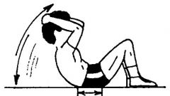 Muscoli da manubrio - Immagine: 9