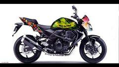 Una Kawasaki per il Nepal - Immagine: 1