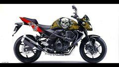 Una Kawasaki per il Nepal - Immagine: 2