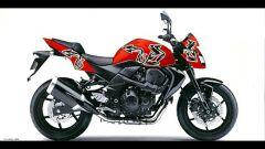 Una Kawasaki per il Nepal - Immagine: 3