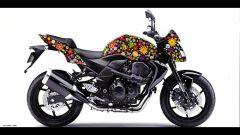 Una Kawasaki per il Nepal - Immagine: 4