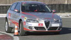 Campionato Italiano Guida Sicura - Immagine: 3