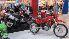 Speciale Eicma 2005 - Immagine: 74