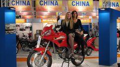 Speciale Eicma 2005 - Immagine: 75