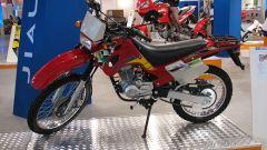Speciale Eicma 2005 - Immagine: 78