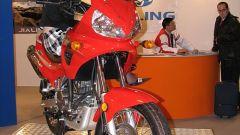 Speciale Eicma 2005 - Immagine: 81
