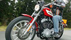 Harley Davidson Sportster R - Immagine: 9