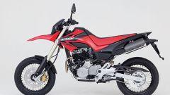 Honda FMX 650 - Immagine: 1