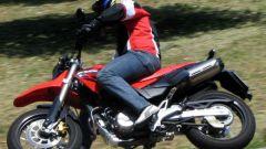 Honda FMX 650 - Immagine: 9