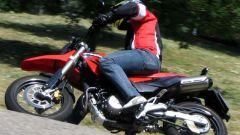 Honda FMX 650 - Immagine: 8