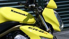 Kawasaki ER-6n - Immagine: 12