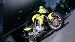 Kawasaki ER-6n - Immagine: 20