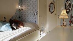 Project Fox: torna la caccia alla volpe - Immagine: 50