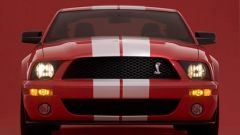 Ford Shelby Cobra GT500 - Immagine: 19