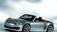 Volkswagen BlueSport - Immagine: 1