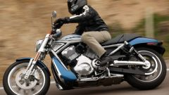 Harley Davidson Street Rod - Immagine: 24