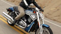 Harley Davidson Street Rod - Immagine: 2