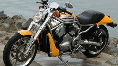 Harley Davidson Street Rod - Immagine: 7