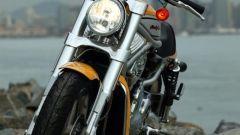 Harley Davidson Street Rod - Immagine: 8