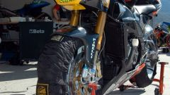 Endurance Rijeka: la gara - Immagine: 38