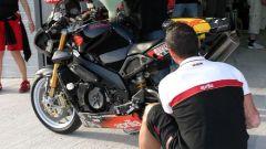 Endurance Rijeka: la gara - Immagine: 28