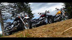 Harley 2005 - Immagine: 1