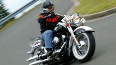 Harley 2005 - Immagine: 21