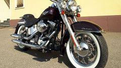 Harley 2005 - Immagine: 2